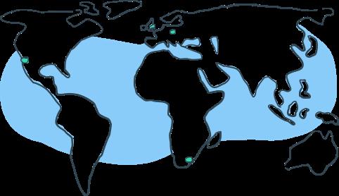 ziflow-worldwide-presence